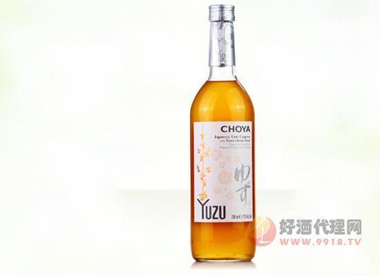 俏雅柚子果酒