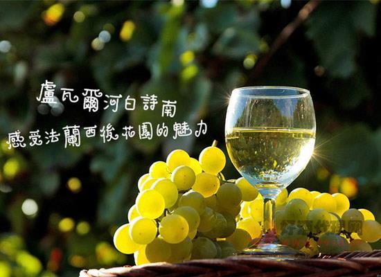 白诗南葡萄酒