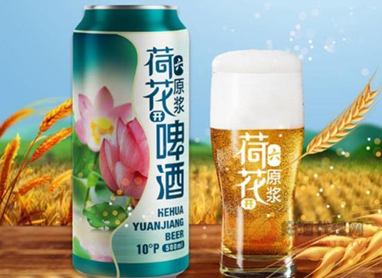 山东荷花啤酒