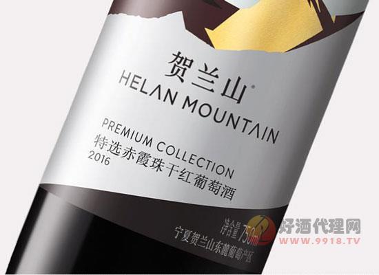 賀蘭山葡萄酒