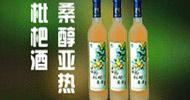 廣東桑醇酒業有限公司
