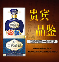 河南鹏龙酒业有限公司