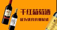 深圳市法斯达进出口贸易有限公司