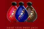 瀘州秀水坊山城老井酒銷售有限公司(北京高飛鑫源商貿有限公司)