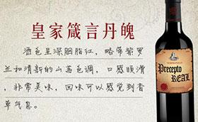 南宁狄洛诗贸易有限公司