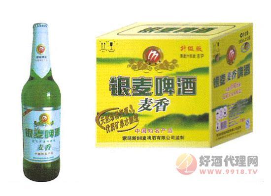 銀麥麥香啤酒價格