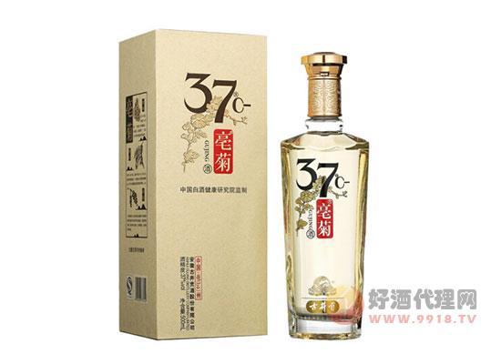 古井貢酒 亳菊 三十七度白酒