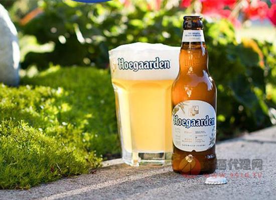 比利時Hoegaarden啤酒330ml*24瓶價格