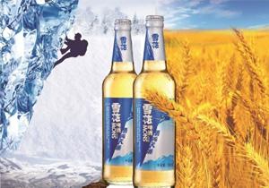 雪花啤酒勇闯天涯500ml