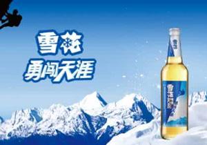 雪花啤酒勇闯天涯500ml单瓶