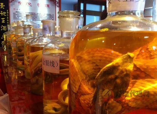 普通人泡蛇酒的禁忌 将蛇去头去毒囊瓶口拧紧更安全