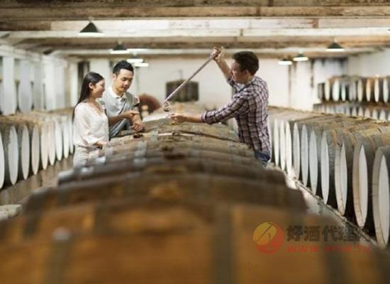 盘点南澳大利亚不可错过的酒庄体验:品酒调配一条龙