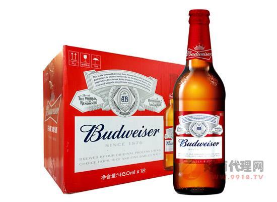 百威啤酒多少钱一瓶?2018百威啤酒最新价格汇总