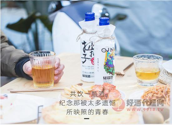 青城山猕猴桃酒价格贵吗?一款平价的猕猴桃果酒