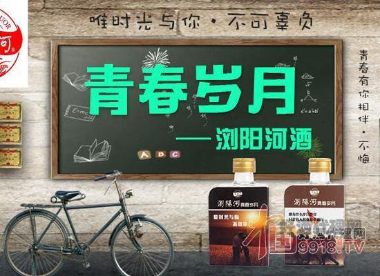 浏阳河酒厂出品青春岁月小酒