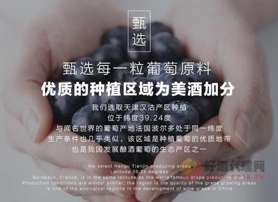 王朝干红葡萄酒多少钱?王朝品鉴1980干红礼盒装价格