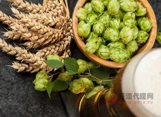啤酒的原料是什么?各国啤酒酿造原料和口感有差异