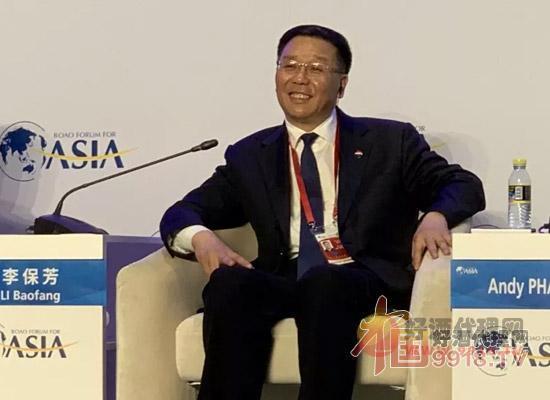 李保芳出席博鰲亞洲論壇