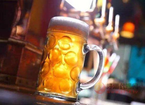 晚上喝啤酒会长胖吗?90%的人都错了