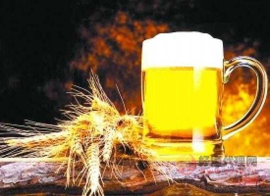 柏龙拜仁球迷啤酒怎么样,受欢迎的原因有哪些?