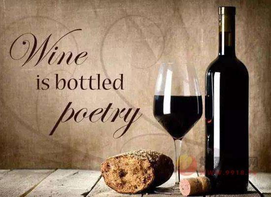 美食没有美酒相伴便是悲剧,葡萄酒十句幽默名言