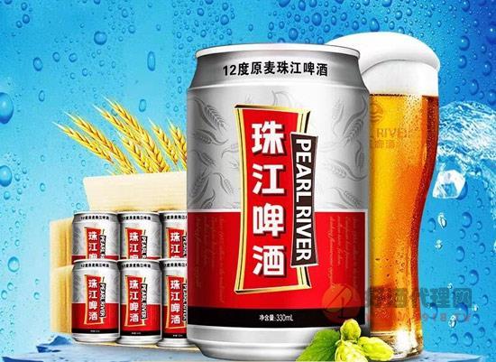 珠江啤酒怎么樣,珠江12度原麥啤酒批發價多少錢