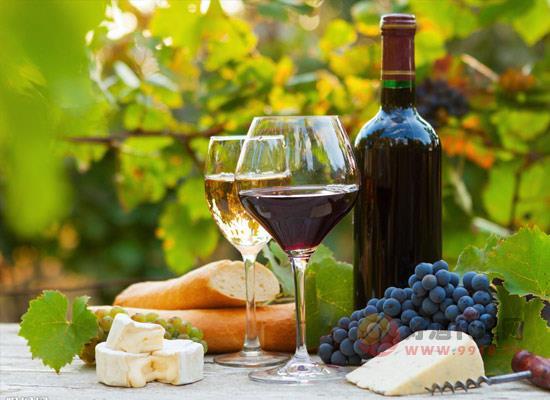 葡萄酒应该怎么喝,9种葡萄酒喝法总有一款适合你