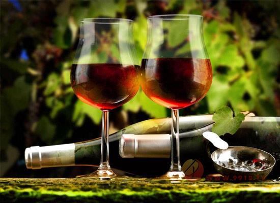 爵雅葡萄酒价格贵吗,烟台爵雅洋葱葡萄酒多少钱