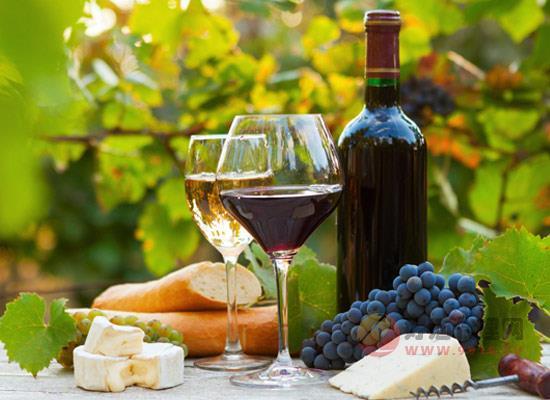 欢聚时刻应该怎么选择葡萄酒,选酒的技巧有哪些