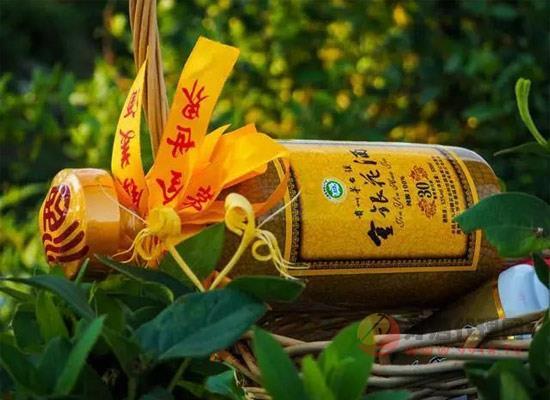 金银花酒怎么样,金银花酒的制作方法有哪些