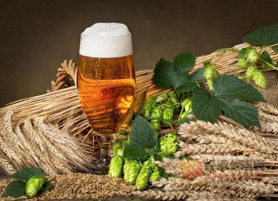 小麦酿造啤酒有什么好处,小麦啤酒的优势和劣质