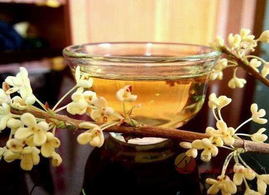 桂花酒是哪里的特產,講述桂花酒的來歷