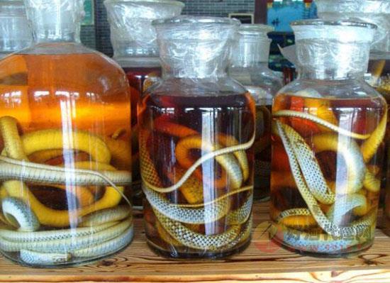 蛇酒泡了10年蛇还活着,蛇在酒里面泡能活多久