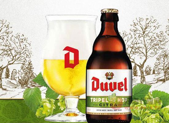 督威三花啤酒多少錢一瓶,比利時烈性精釀啤酒價格表