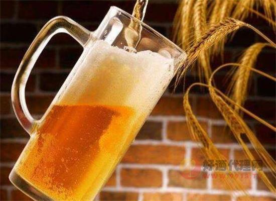 小麦啤酒为什么受欢迎,哪些国家的小麦啤酒比较好喝