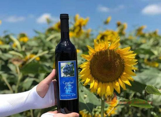 柯諾畔甜型藍莓酒,加拿大進口藍莓水果酒價格