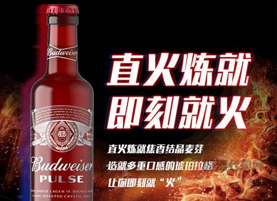 百威魄斯啤酒怎么樣,紅出激情,綻放青春