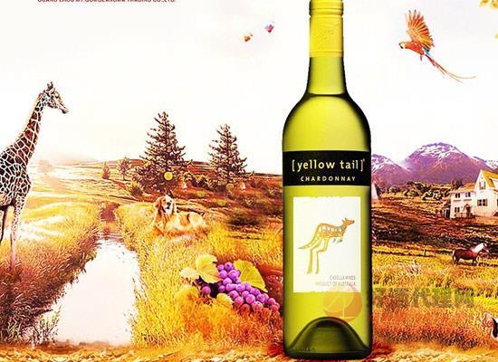 黃尾袋鼠葡萄酒口感怎么樣,黑皮諾有什么特色