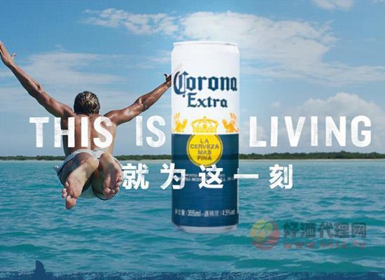 科羅娜啤酒多少錢一箱,箱裝進口啤酒價位表