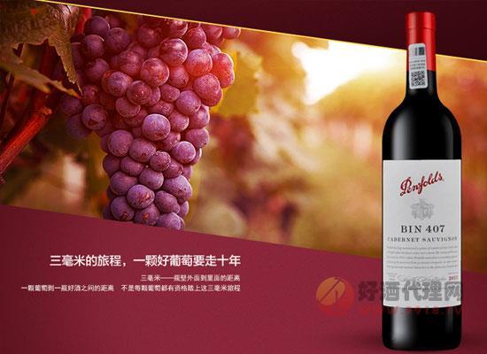 奔富407多少钱一瓶,奔富赤霞珠葡萄酒价格介绍