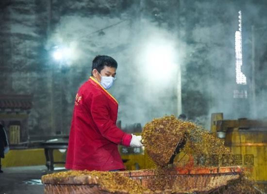 又是一年二月二!瀘州老窖春釀出酒封藏釋放出怎樣的信號