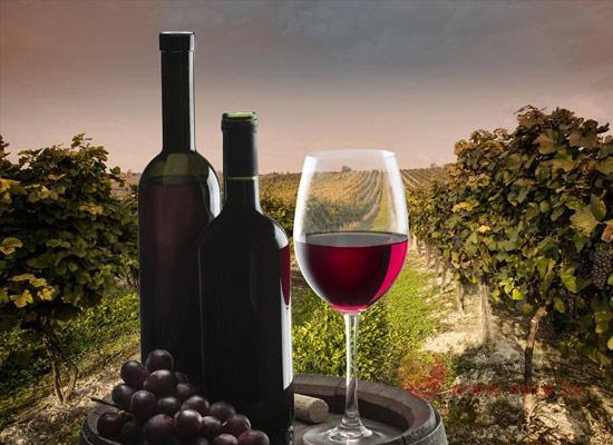 王朝恬情干红葡萄酒多少钱,性价比怎么样