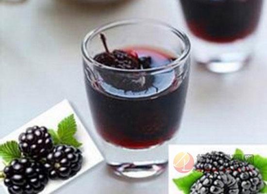 自制桑葚酒應該怎么做,營養價值有哪些