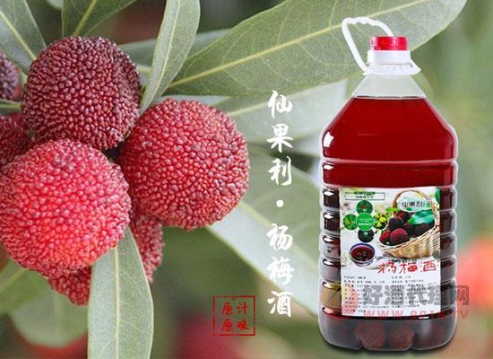 浙江仙居楊梅酒好喝嗎,酸甜可口,夏季佳品