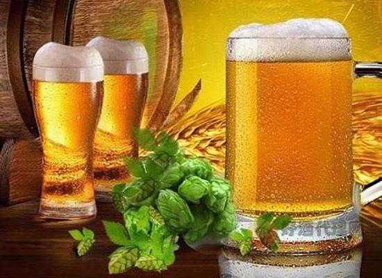 啤酒是素酒吗,素酒和荤酒有什么区别