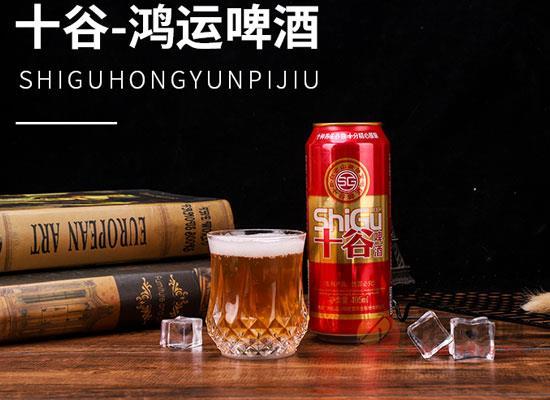 十谷鴻運敬修堂啤酒價格貴嗎,一箱多少錢