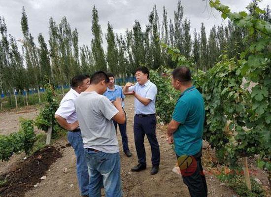 房玉林:揭密裝在葡萄酒瓶中的中國風土