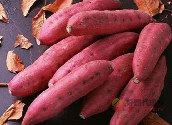 红薯酒的酿制方法,教你如何酿制好喝的红薯酒