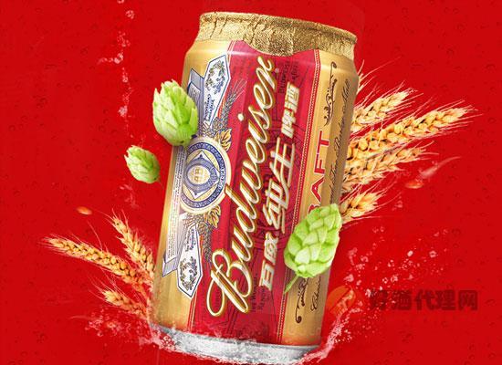 百威純生拉罐啤酒性價比高嗎,一箱多少錢