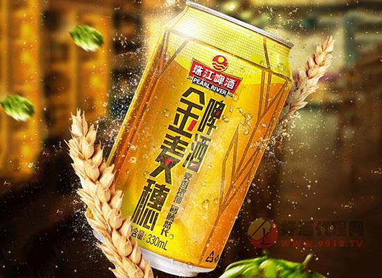 珠江啤酒多少錢一瓶,價格怎么樣